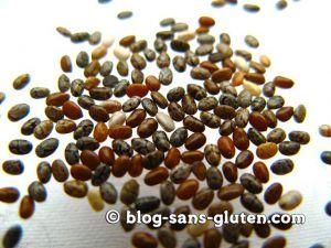 Recette Par quoi remplacer les oeufs dans un gâteau : les graines de chia