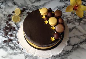 Recette Entremets praliné, citron et chocolat