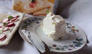Recette Tartines au fromage frais maison et radis rose