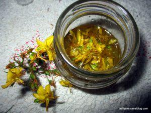 Recette Macérât ou huile de Millepertuis, Herbe de la Saint-Jean