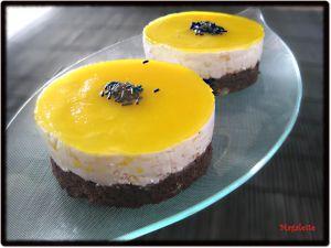 Recette Entremets Chocolat - Orange