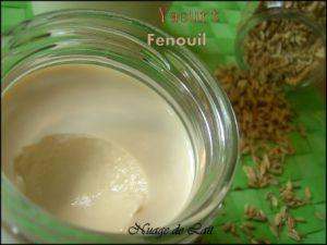 Recette Yaourts Maison saveur Fenouil