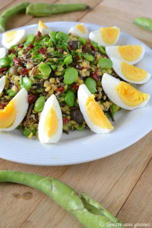recette land recette de salade de riz sauvage lentilles corail et f ves sur tomate sans graines. Black Bedroom Furniture Sets. Home Design Ideas