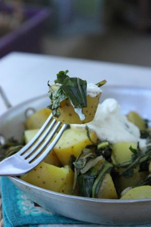 """Recette Poêlée de pommes de terre """"ratte du Touquet"""" aux feuilles de pissenlit"""