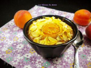 Recette Moelleux aux abricots et aux amandes (sans beurre)