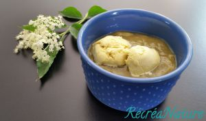 Recette Dessert de Printemps au Jardin : Glace aux Fleurs de Sureau et Compote de Rhubarbe