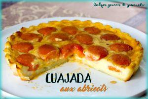 Recette Cuajada aux abricots
