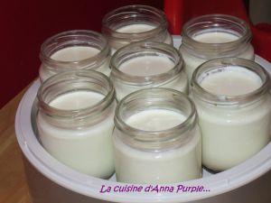 Recette Yaourt maison nature au lait de brebis