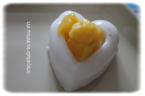 Recette Panna cotta coco mangue