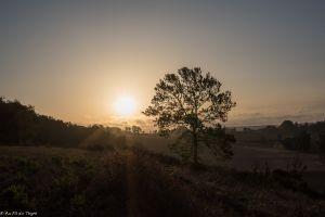 Recette Lever de soleil gerseois (Gers, Savès)