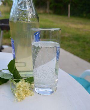 Recette Sirop de fleurs de sureau