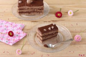 Recette Entremets châtaigne et chocolat