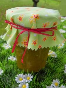 Recette Confiture de tomates vertes a la vanille ( thermomix)
