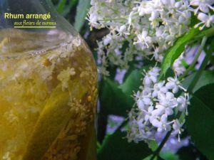 Recette Rhum arrangé aux fleurs de sureau