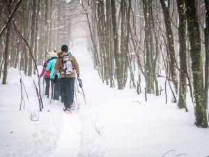 Recette Randonnée en raquettes à neige au champ du feu