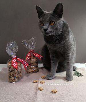 Recette Biscuits ou friandises pour chat ou chien au companion thermomix ou autres robots