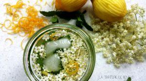 Recette Eau de fleur de sureau et citron