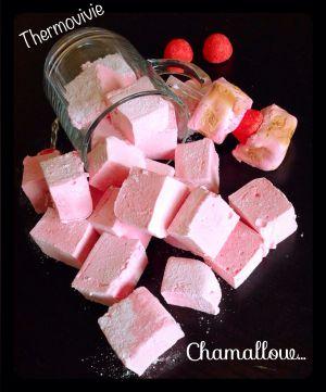 Recette Chamallow ou petites guimauves au thermomix