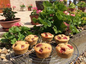 Recette Muffins fraise ou cerise et chocolat