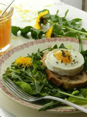 Recette Salade de pissenlit -feuilles fleurs et gelée- et sa tartine de Rocamadour