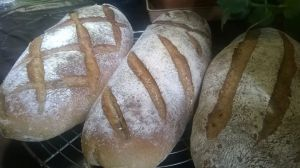 Recette Pain campagne