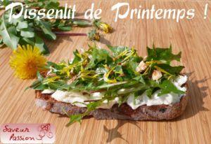 Recette Tartine printanière aux feuilles et fleurs de pissenlit