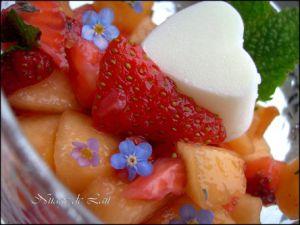 Recette Fraise et Melon en salade et glaçon de Petit Suisse au Sureau