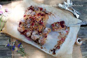 Recette Gâteau crumble à la rhubarbe et aux framboises