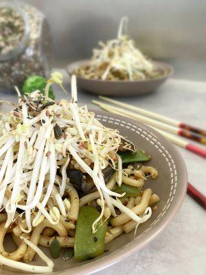 Recette Wok de Nouilles Udon au Gingembre, Sésame au Kimchi, Ail et Combava et Légumes