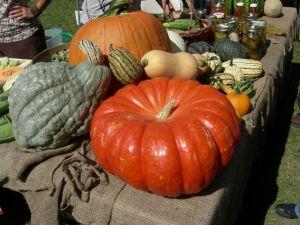 Recette Soupe aux légumes d'automne