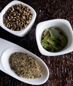 Recette Poudre aromatique sans sel (au chanvre)