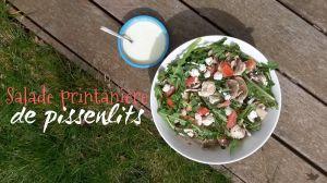Recette Salade printanière de pissenlits et sa blanche vinaigrette