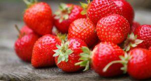 Recette Tarte au fraises