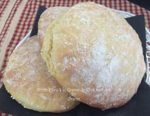 Recette Petits pains a la graine de chia au four