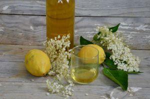Recette Liqueur de fleur de sureau