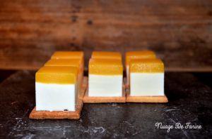 Recette Petits cubes de panna cotta à la mangue