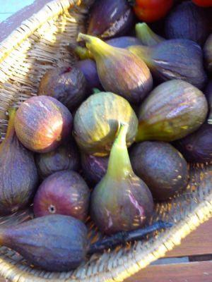 Recette Confiture de Figues aux noix