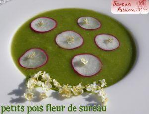 Recette Soupe froide de petit pois, radis, fleur de sureau