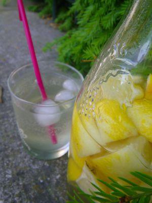 Recette Citronnade pétillante aux fleurs de sureau