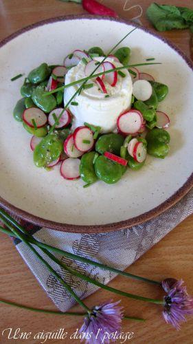Recette Salade de fèves, radis roses et fromage en faisselle