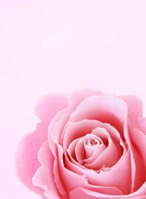 Recette Bouquet du Dimanche #26