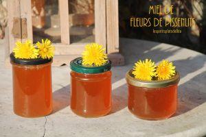 Recette Miel de fleurs de pissenlit