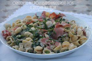 Recette Orecchiette aux pousses d'épinards petits pois et ricotta aux noix - Italie  les Pouilles (4) Ostuni