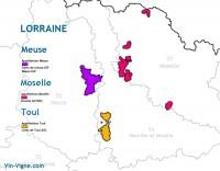 Recette Côtes de Toul