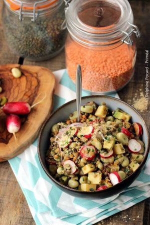 Recette Salade gourmande de lentilles et fèves, aux radis roses
