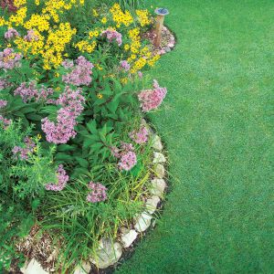 Recette Best 20 Pictures Landscape Gardens Without Grass