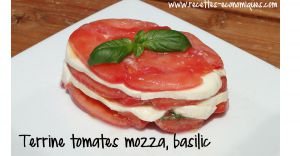 Recette Terrine de tomates mozzarella