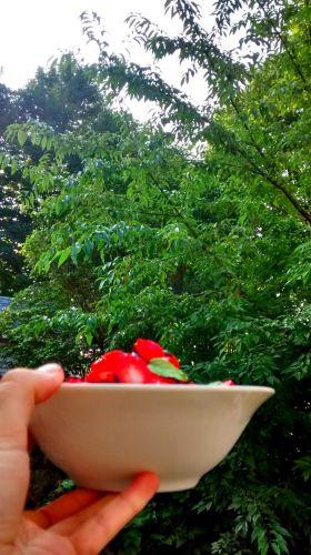 Recette Des fraises pour le solstice