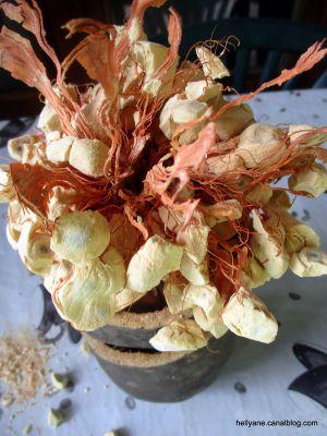 Recette Connaissez vous ce fruit ??????