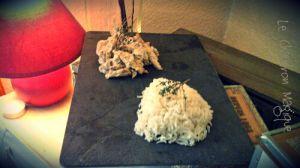 Recette Monsieur Cuisine........le sauté de poulet à la crème ou les pilons de poulet c'est vous qui voyez